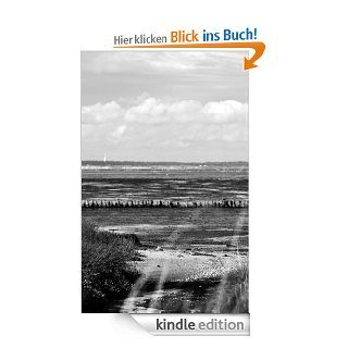 OHNE DICHeBook: Michaela Santowski: Kindle Shop