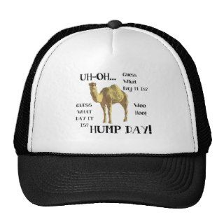 Hump Day Camel Hat