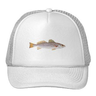 Spotted Seatrout Hat