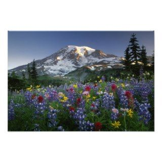 USA, Washington, Mt Rainier NP, Spectacular 2 Photograph