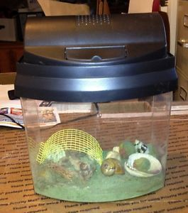 Lighted Acrylic Terrarium Habitat Cage Hermit Crab Lizard Spider Accessories