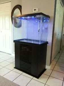 54 gallon corner fish tank for Column fish tank