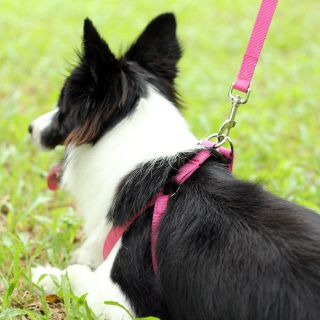 Rose Easy Walk Pet Dog Harness Leader with Pull Free Leashes Size M