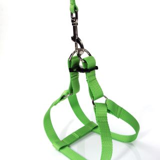Light Green Easy Walk Pet Dog Harness Leader with Pull Free Leashes Size S