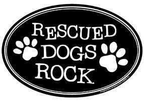 Rescued Dogs Rock Dog Magnet US Made Car Magnet Great Gift for Dog Lover