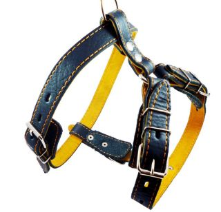 "Leather Dog Pulling Harness Excercise Walk Boxer Amstaff 23"" 29"" Size"