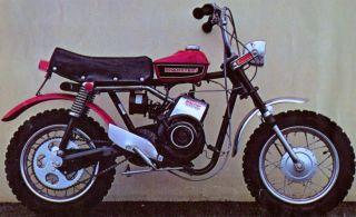 Rupp Roadster 2 Photo Vintage Mini Bike Minicycle Minibike