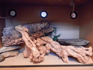Large Vivarium for Sale Would Suit Bearded Dragon Lizards Snakes Reptiles