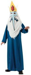 Child Cartoon TV Show Adventure Time Evil Villain Ice King Magic Wizard Costume