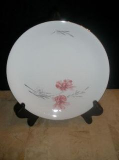 Rosenthal KPM Krister China Germany Dinner Plate