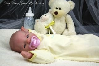 Tngun Reborn Doll Annalisa Prototype 1 Dianna Effner's 2nd German Vinyl Kit