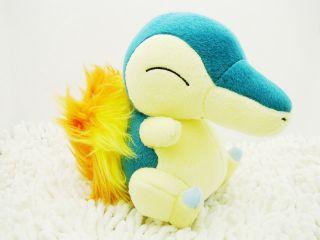 "New Pokemon 6 5"" Cyndaquil Plush Toy Doll PB21"