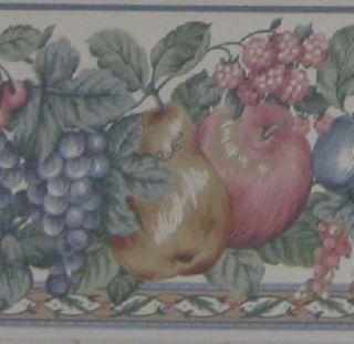 Kitchen Wallpaper Border Grape Vine Fruit Country Apple