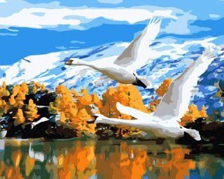 Flying Swan acrylic (2013 New DIY paint by number 16*20'' kit) Arts, Crafts & Sewing