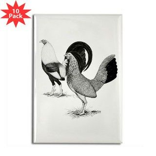 American Game Fowl2 Rectangle Magnet (10 pack) by jackynet