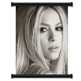 "Shakira Sexy HOT Fabric Wall Scroll Poster (16"" x 21"") Inches: Everything Else"