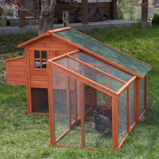 Boomer & George Deluxe Chicken Coop with Exercise Pen   Chicken Coops