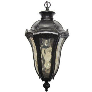 Yosemite Home Decor 326SHIWB Straford 1 Light Outdoor Hanging Pendant with Water Glass Shade, Small