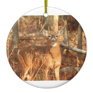 Whitetail Deer Buck Ornaments