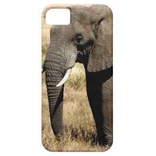 African Bush Elephant  moving to success Case For iPhone 5/5S